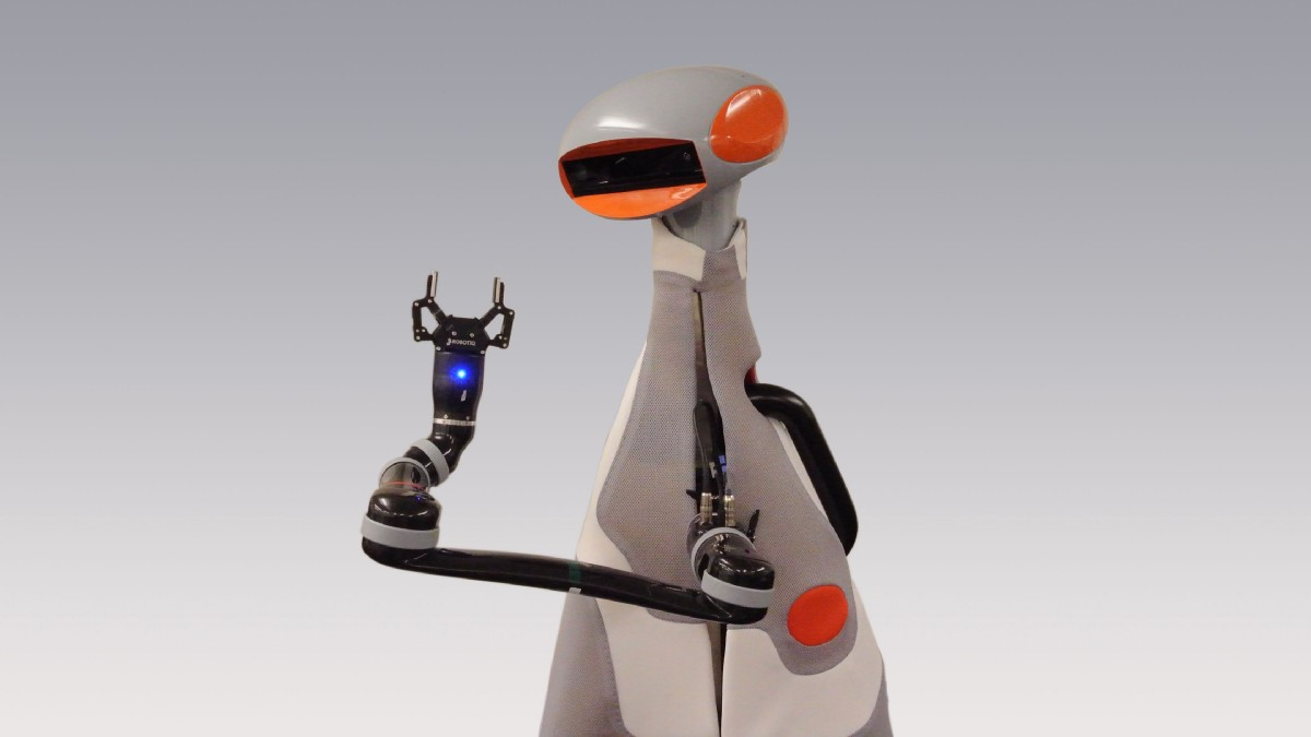 The robot era: Which could be their role in veterinary